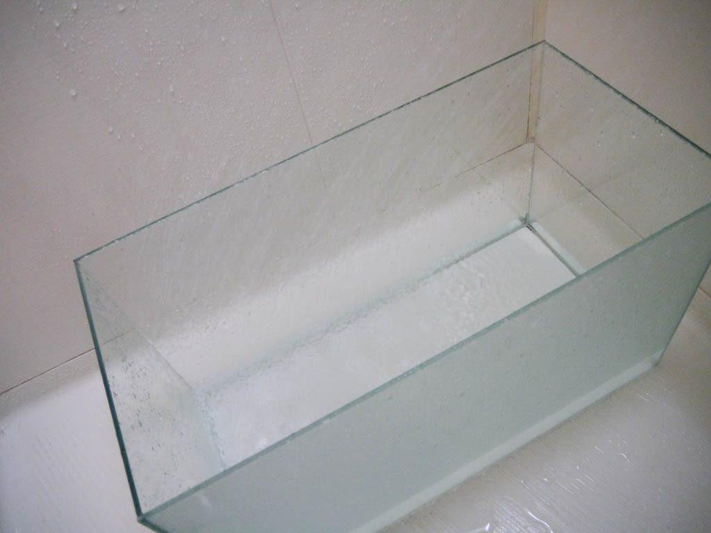 洗われている水槽